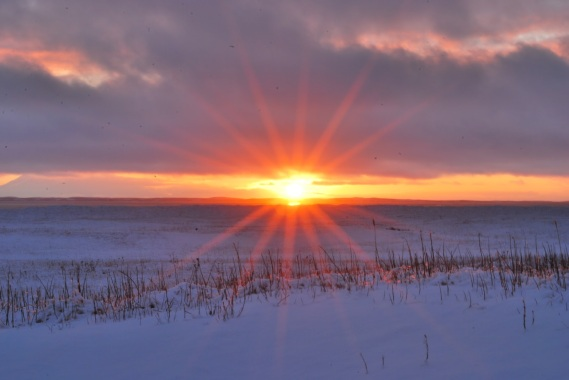 winter-solstice-stunning-image-best-hd-wallpapers-in-widescreen-free